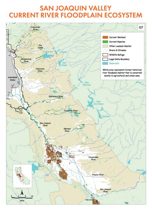San Joaquin Valley Current River Floodplain Ecosystem