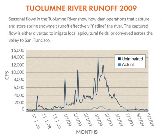 Tuolumne River Runoff - 2009